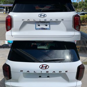 Palisade emblems before and after